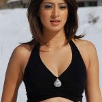 Lakshmi Rai Breast Sizes