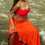 Anaika Soti Boobs See Through Dress